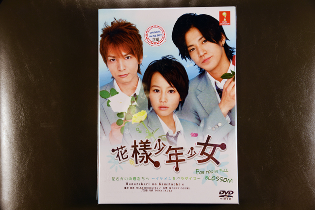 Boys Over Flowers I DVD English Subtitle